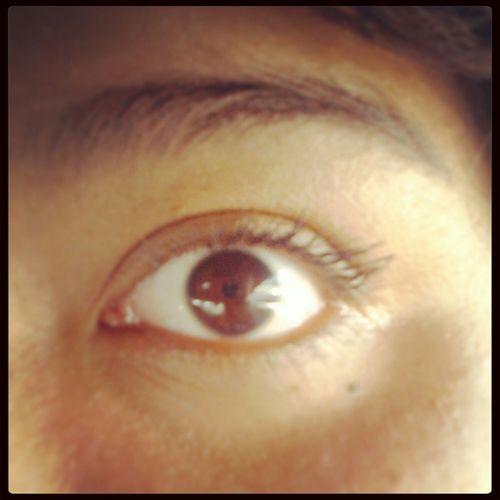 looks better in person My Eyeball Brown Eyes Eyelashes