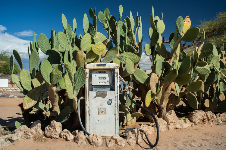 Fuel pump against succulent plants growing on field against sky