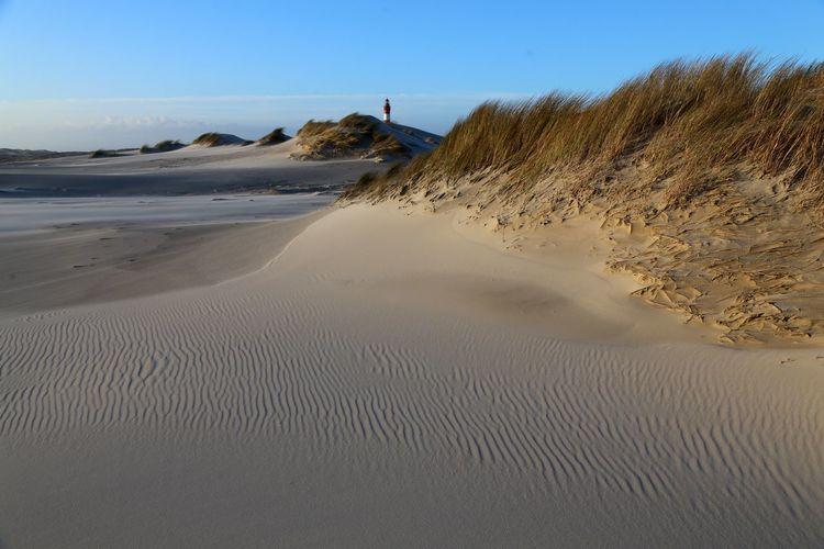 Land Sand Sand
