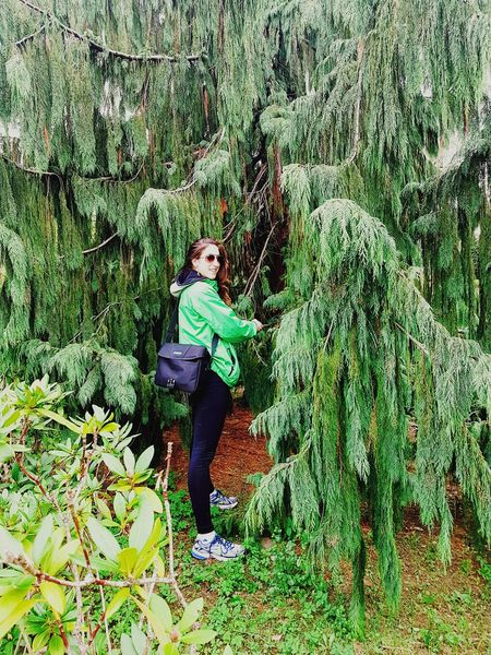 woman in green.. Green Color One Person Casual Clothing Young Women Outdoors Standing Plant Nature Real People Looking At Camera One Young Woman Only Women Young Adult Lifestyles Green Nature Botanik Beautiful Nature Treelovers Trees_collection Beauty In Nature Details And Colors Seeking Inspiration From My Perspective Detailphotography No People