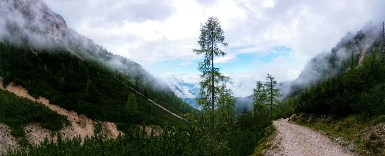 Walk On The Foggy Mountains Long And Winding Trail San Vigilio Di Marebbe Bolzano Trentino Alto Adige Italy Travel Photography Travel Voyage Traveling Mobile Photography Fine Art Photography Panoramic Views Scenic Landscapes Breathtaking Sceneries Wide And Wild Hoping For Better Weather To Come