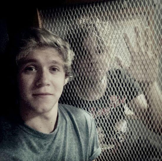 Niall Horan Ashton Irwin One Direction 5SOS