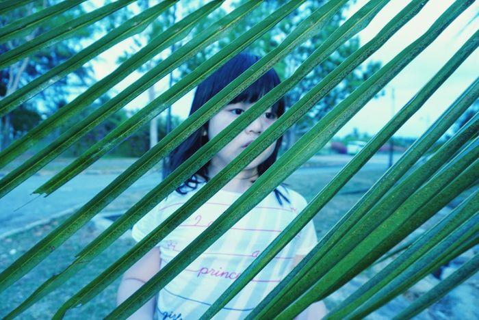 Girl Kota Kinabalu Coconut Leafs Enjoying Life Nature_collection Green Leaf