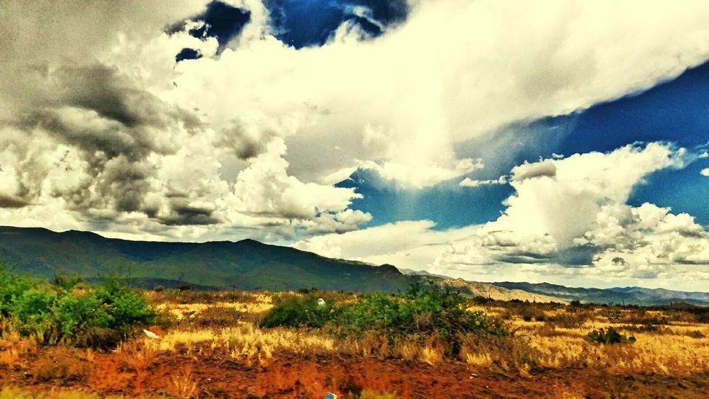 Arizona, sedona. Beauty In Nature LoveMyWork Myphotography. Photography Mywork Scenic. Nature Green Color Travel Destinations Day Arizona.