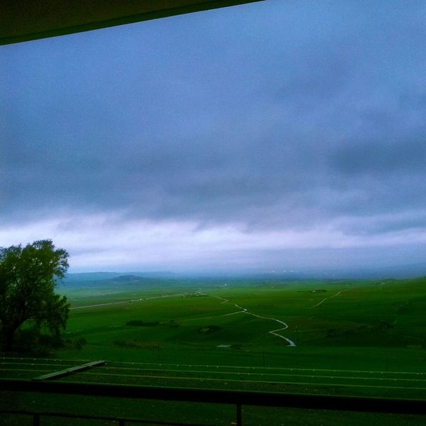 Athmosphere Grey Sky Great Atmosphere Green Green Green!  Lovely Weather Lovely Relaxing Aphrodisiac Psichedelic Enjoying Life