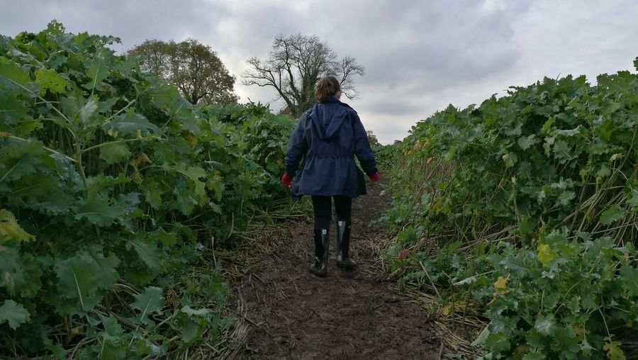 Full Length One Person Rear View Outdoors Nature Cloud - Sky People Sky Landscape Tree Child Girl Coat Wellies  Childhood Gloves Dirt Kale Farm Enjoy The New Normal Women Around The World