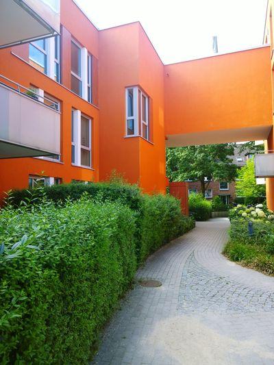 Houses And Windows Urban Nature Architecture Eimsbüttel Stellingen Lokstedt Eimsbush