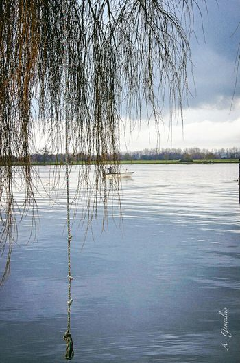 Bico da goiva, Water Nature Reflection Tranquility Refraction Tranquil Scene Sky Day Tree