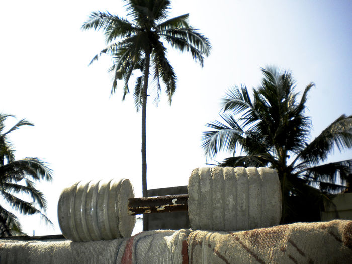 Beach Cement Clear Sky Cufflinks Day Dumbbells Growth Gym Gym Flow GymLife Heavy Equipment Home Sweet Home Homemade Muscles Nature No People Outdoors Palm Tree Sea Sky Tree Weights Work Out