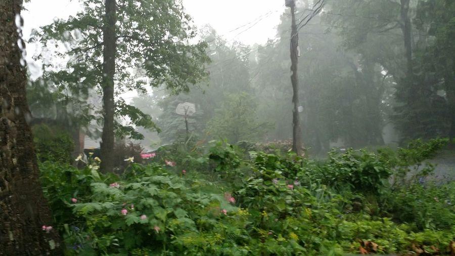 Rain Streaked Windows The Minimals (less Edit Juxt Photography) Thunderstorms