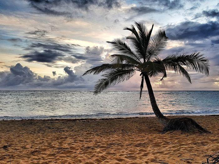 Sunrise Punta