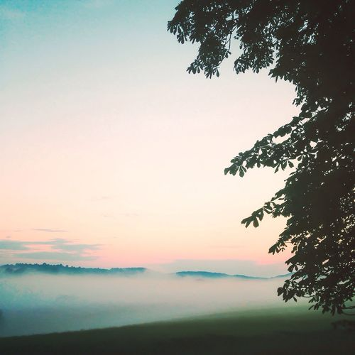 Fog Landscape Scenery Sky