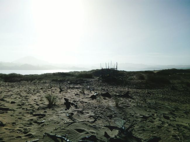 Nature Sand Beach Landscape Apocalypse Apocalipsis Dry Land Tranquil Scene Scenics Sèquia Desierto Deserts Around The World