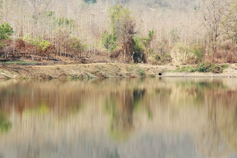 Lake View Fall Season Forest Reflection Landscape Outdoors No People Watercolor in North Thailand South East Asia
