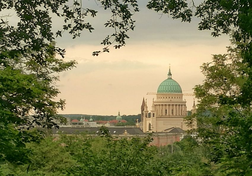 First Eyeem Photo Potsdam Potsdam_city Urban Sunny Day Tree Point Of View Nikolaikirche Dome Golden Moments  Hello World Watching Sights & Views  Sightseeing Atmospheric Mood Silhouette Architectural Detail Tower