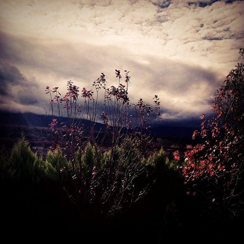 Light And Shadow Clouds And Sky Beautiful Nature OpenEdit Enjoying Life IPhoneography Spring Stop Being Perfect