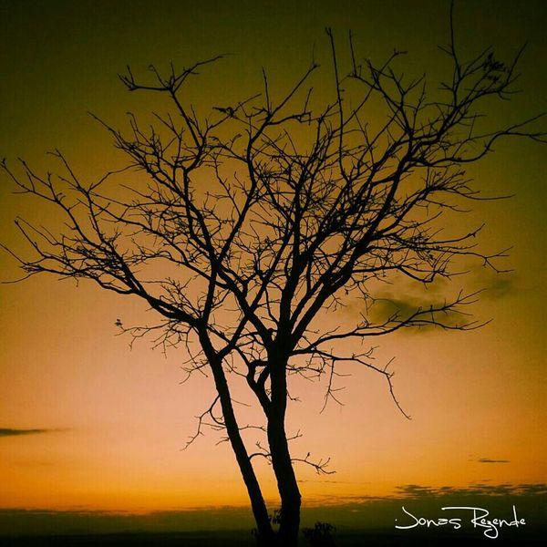 Fimdedomingo Fimdodia Fimdetarde PorDoSol😍 Relaxing Hi! Sole...☀ Sunset_collection Sun_collection Su