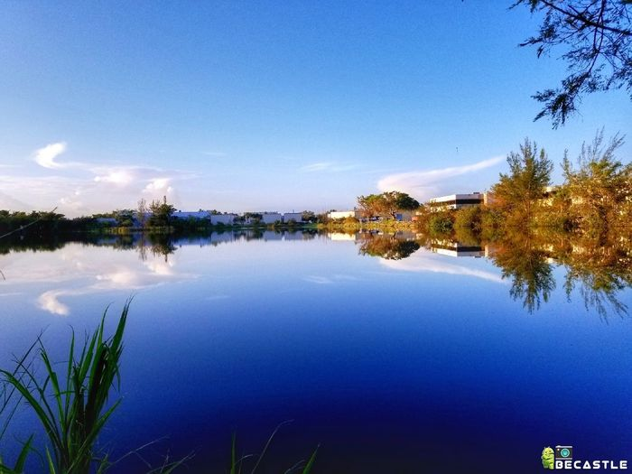 Lake View Water Reflection No People Nature Tranquility Blue Scenics Landscape Beauty In Nature Day Miami Cloud - Sky Photography Miami FL Usa 🇺🇸☀️ Sky Beatiful Nature Lake