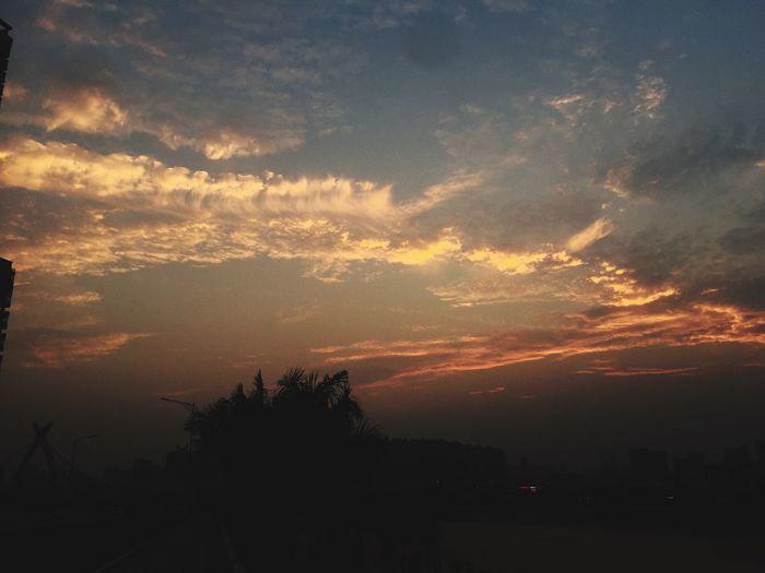 Sunset Beauty In Nature Sky Tree Scenics - Nature Cloud - Sky Silhouette