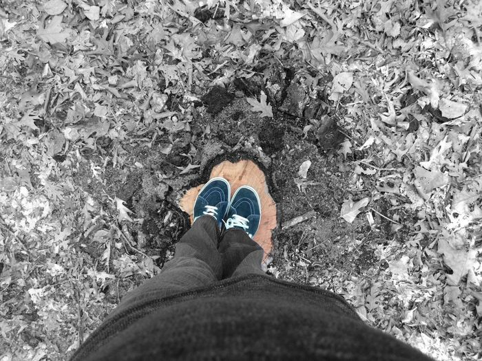 Low Section Person Standing Personal Perspective Shoe Human Foot Directly Above Day Outdoors Land Overhead View vans stumped