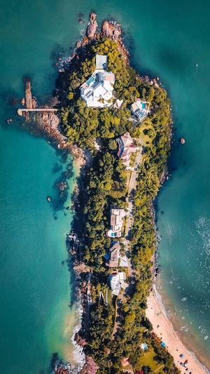 High angle view of sea and trees
