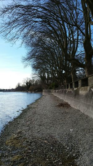 Lake Beautiful Surroundings Nofilter#noedit Konstanz Germany Trees Eyeem Made In Gernany 🇩🇪Photos Club📷 Viewpoint EyeEm Nature Lover Natural