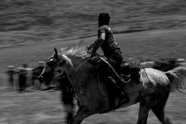 Horse Jockey Let's Go. Together.