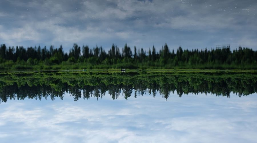 Reflection of trees on lake against sky