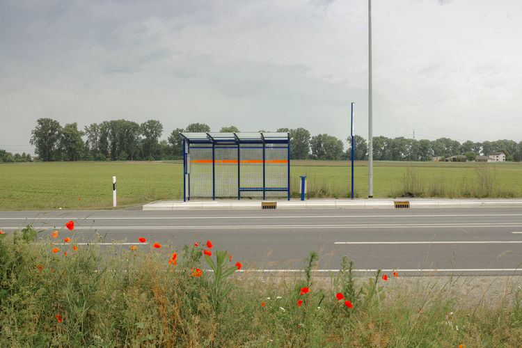 Bushaltestelle Traffic Beauty In Nature Busstop Cloud - Sky Day Empty Field Flower Flowering Plant Grass Green Color Growth Land Nature No People Outdoors Plant Poppies  Road Sky Sport Transportation Tree