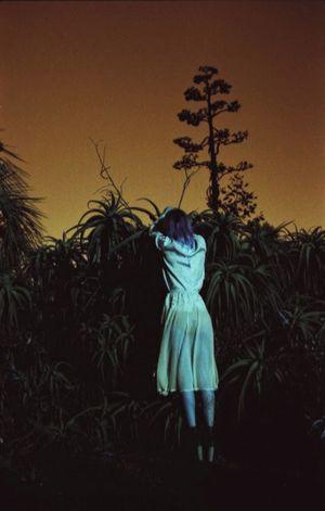 The Earth Speaks Laurenluck Organsinsleep Veraskyy Botanical Succulents Film 35mm Mothernature Goddess Supernatural Woman Colors