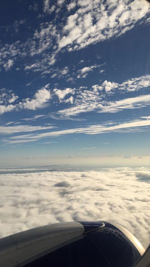 Airplane Travel Cloud - Sky Beauty In Nature