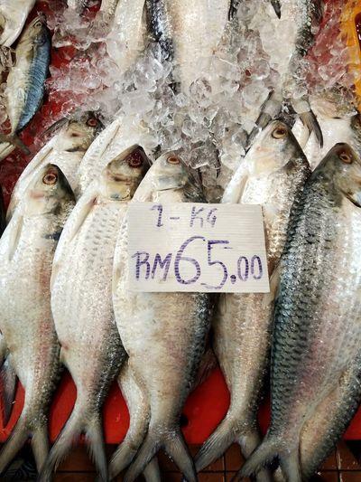 Fresh ikan