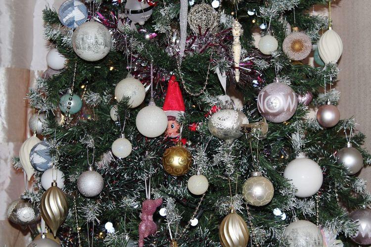 Elf in a tree