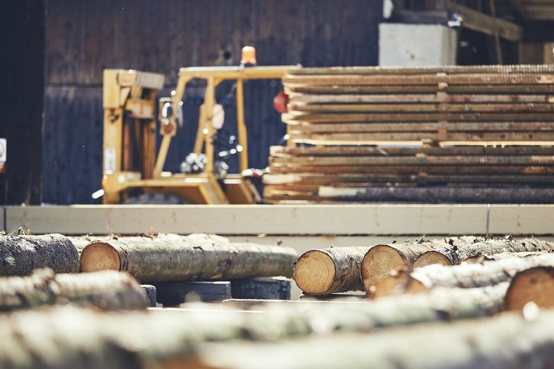 Logs at factory