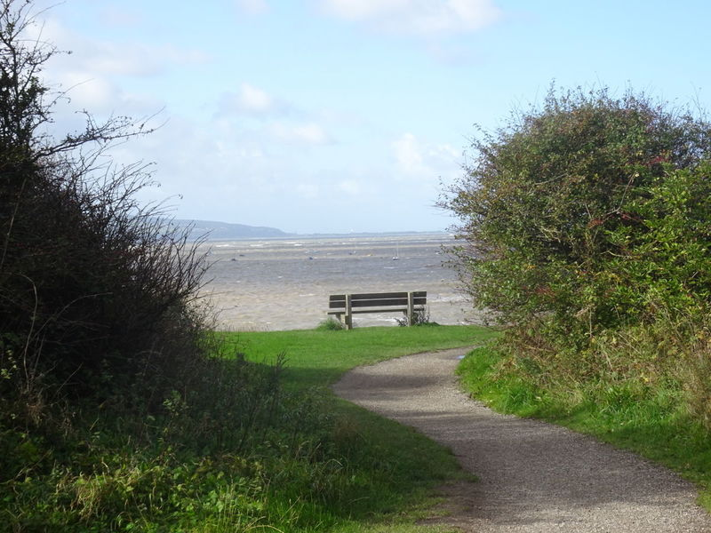 Bench With A View Day Outdoors No People Tranquility Grass Nature Sky Beauty In Nature Cliff Edge Cliff View Sea Autumn Day