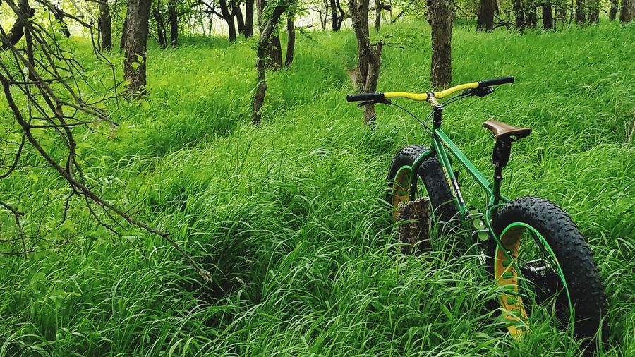 Off the beaten path. Bicycle Green Color Grass Transportation Nature Outdoors Beauty In Nature No People Tree Cycling Transportation Nicepic Mountain Bike Fatbike Fatbikeadventures Fatbikelife Fatbikeculture Fatbikelove Fatbikeworld Fatbikes Grass Long Grass Lush Green Grass