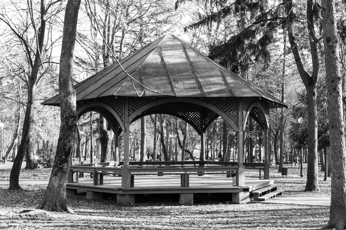 Black and white public garden wooden structure and trees Arch Architecture Autumn Blackandwhite Bridge - Man Made Structure Built Structure City Day Gazebo Monochrome Nature No People Outdoors Pavilion Sky Tree Vintage