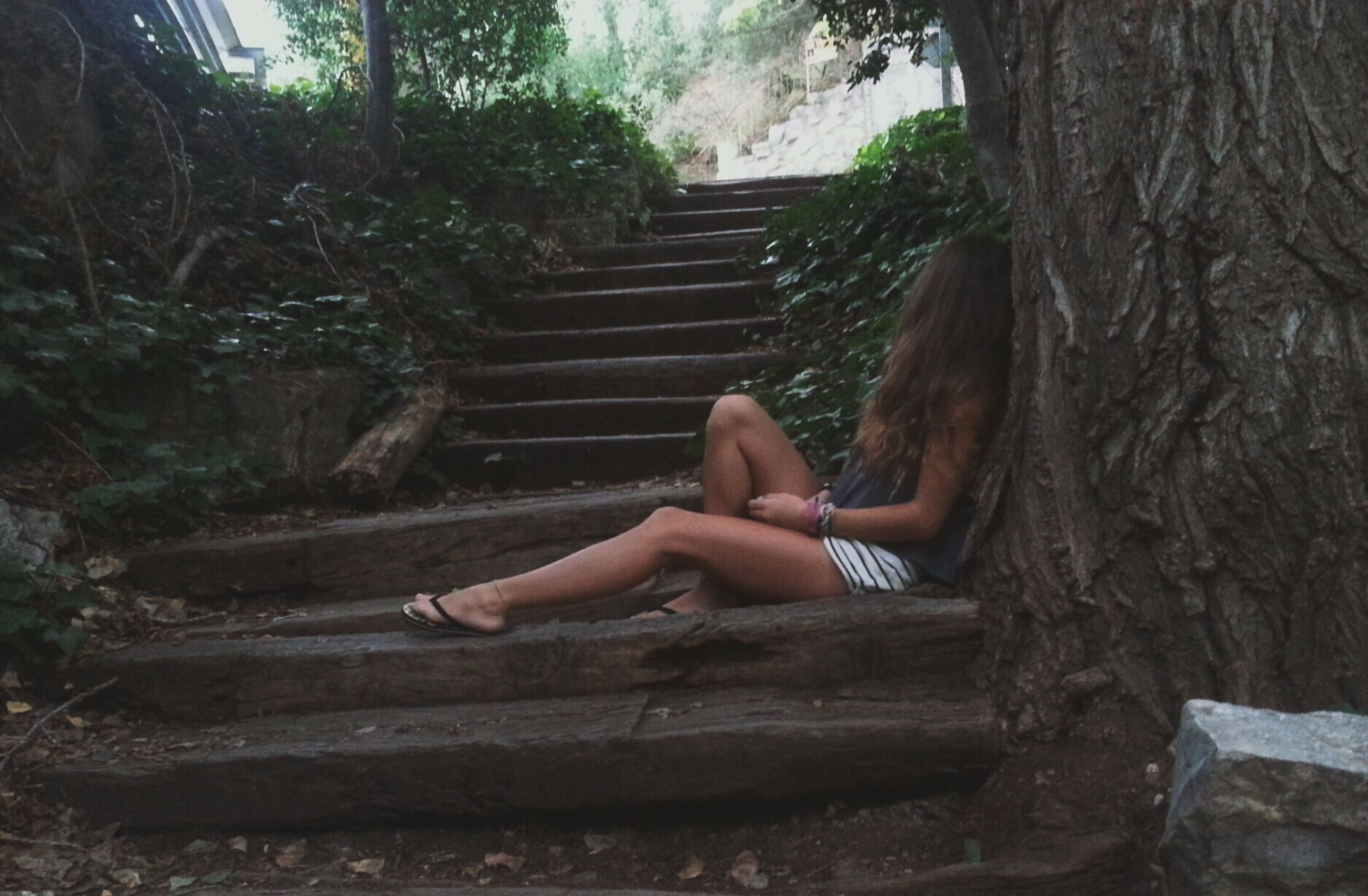 tree, relaxation, sitting, steps, leisure activity, lifestyles, wood - material, person, forest, bench, lying down, day, resting, steps and staircases, staircase, tree trunk, full length, outdoors
