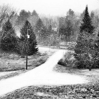 Ah, This is Vermont! #miltonvt #vt Bw_lover Igvermont Hitamputih Vt_landscape Snowwhite Blackandwhite Irox__bw Ig_masterpiece Winter Most_deserving_bw Snow Ig_newengland Cold Ig_captures Blackwhite Igworldclub Monochrome Vt Bw Vermont_scenery Iphoneonly Insta_america Picoftheday 802 Vermont Miltonvt Instagramvt Igharjit All_shots Vermontbyvermonters