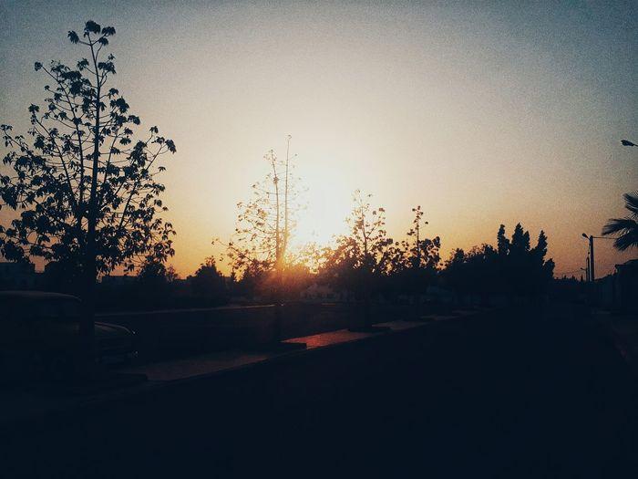 The sun does