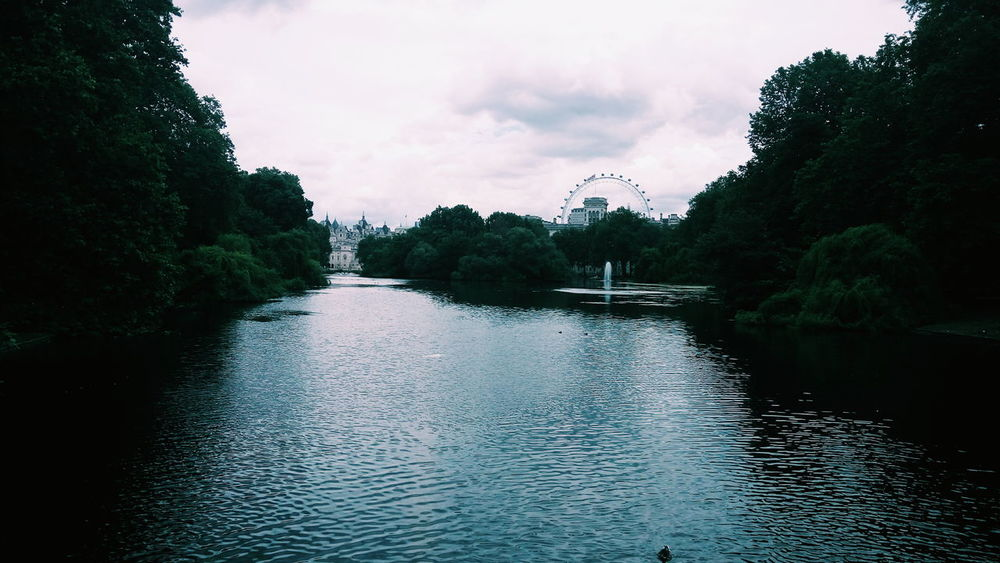 Lunch time views St James Park  St James Park London  Park Views Touristinmyowncity London Nature Pond Water London Eye