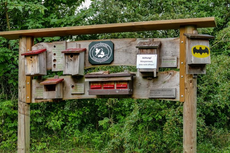 Bienenhotel Dörnberg Hessen Germany Holz Insektenhotel Communication Day Forest Fuel Pump Grass Nature Naturpark Nisthilfen No People Outdoors Public Mailbox Text Tree