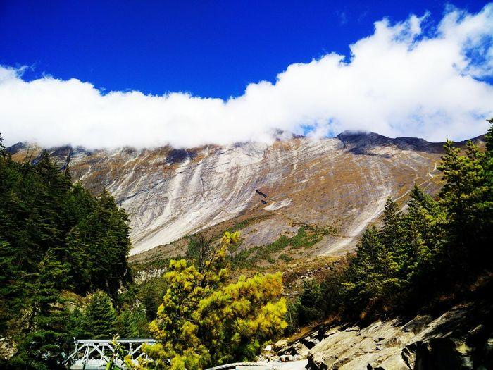 Tree Mountain Sky Landscape Cloud - Sky Rocky Mountains Rock Formation Rock - Object Cliff Mountain Range