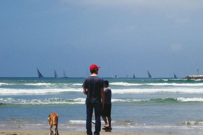 Sandiego Beach Life Dogbeach Lovecali ThisView Sunshine & Sailboats