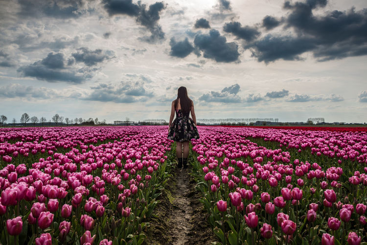 Rear view of woman standing by blooming tulips