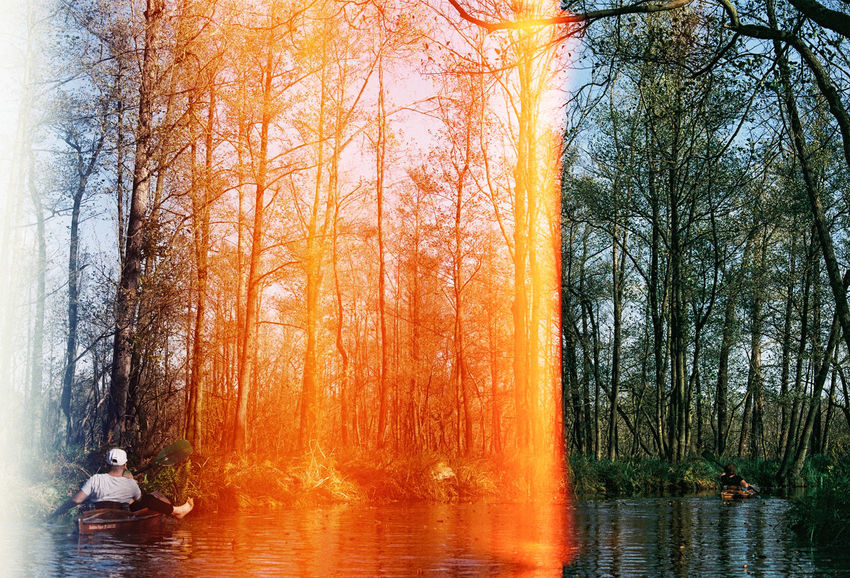 35mm Film Beauty In Nature Day Film Photography Light Leak Nature Outdoors Scenics Sky Tree Water