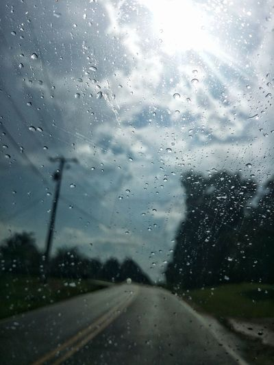 Rain Rainy Days Clouds And Sky Sunlight Roadway Street Path Trees Power Line  Droplets Glass Driving Water City Storm Cloud RainDrop Drop Wet Window Looking Through Window Windshield Car Point Of View