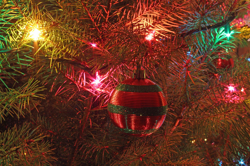 Ornament and lights on the Christmas tree. Albany, Oregon. Best Christmas Lights Christmas Christmas Lights Decoration Fir Tree Glowing Holiday Illuminated Light Multi Colored Night No People Ornaments Shiny Winter