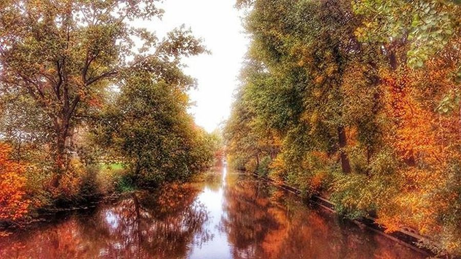 Autumn Dutch Thenetherlands Water Nature Colorful