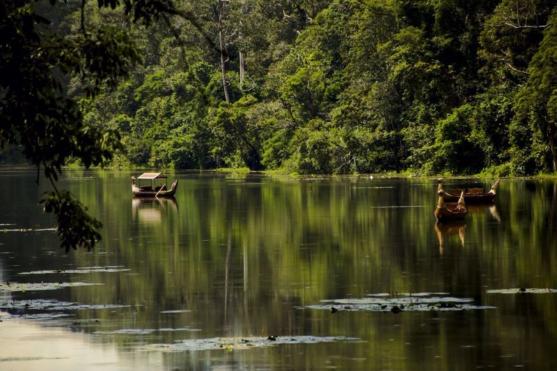 The ships are waiting EyeEmNewHere Angkor Wat Siem Reap Cambodia Boats Tree Water Plant Reflection Lake Waterfront Beauty In Nature Green Color Tranquility Scenics - Nature Tranquil Scene Forest No People Outdoors EyeEmNewHere Summer Exploratorium